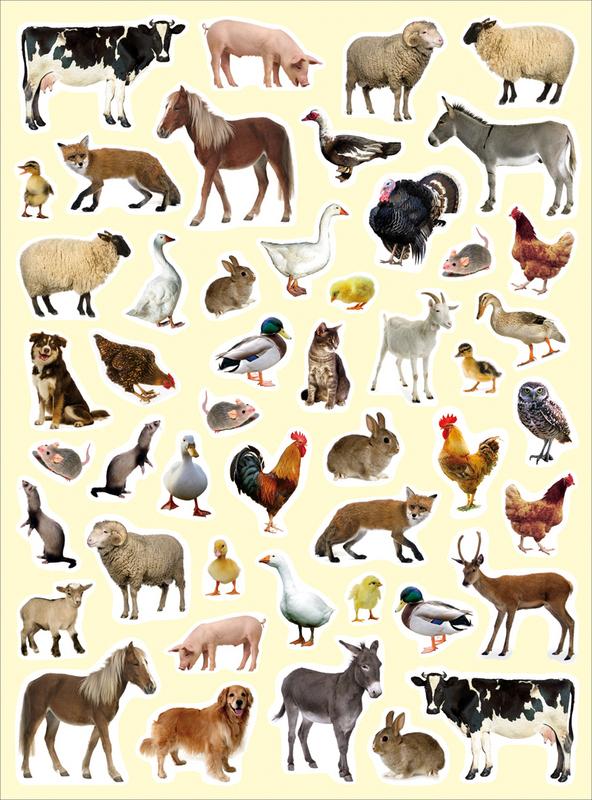 Dessins en couleurs imprimer animaux num ro 283445 - Animaux a imprimer en couleur ...
