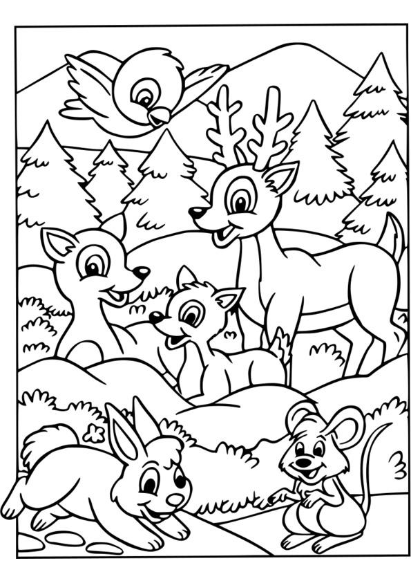 Coloriages à imprimer : Animaux, numéro : 9eca5d05