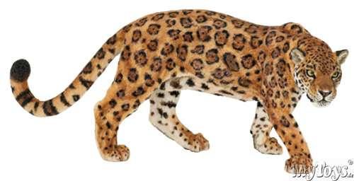 Dessins en couleurs imprimer animaux carnivores num ro 119587 - Animaux a imprimer en couleur ...