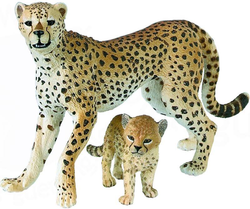 Dessins en couleurs imprimer guepard num ro 466312 - Guepard dessin ...