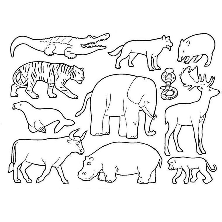 Coloriages imprimer hy ne num ro 25768 - Coloriage de animaux ...