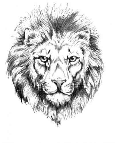 coloriages imprimer lion num ro 23906. Black Bedroom Furniture Sets. Home Design Ideas
