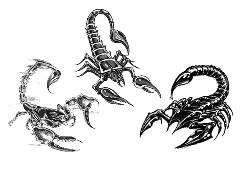 Coloriages à imprimer : Scorpion, numéro : 131158