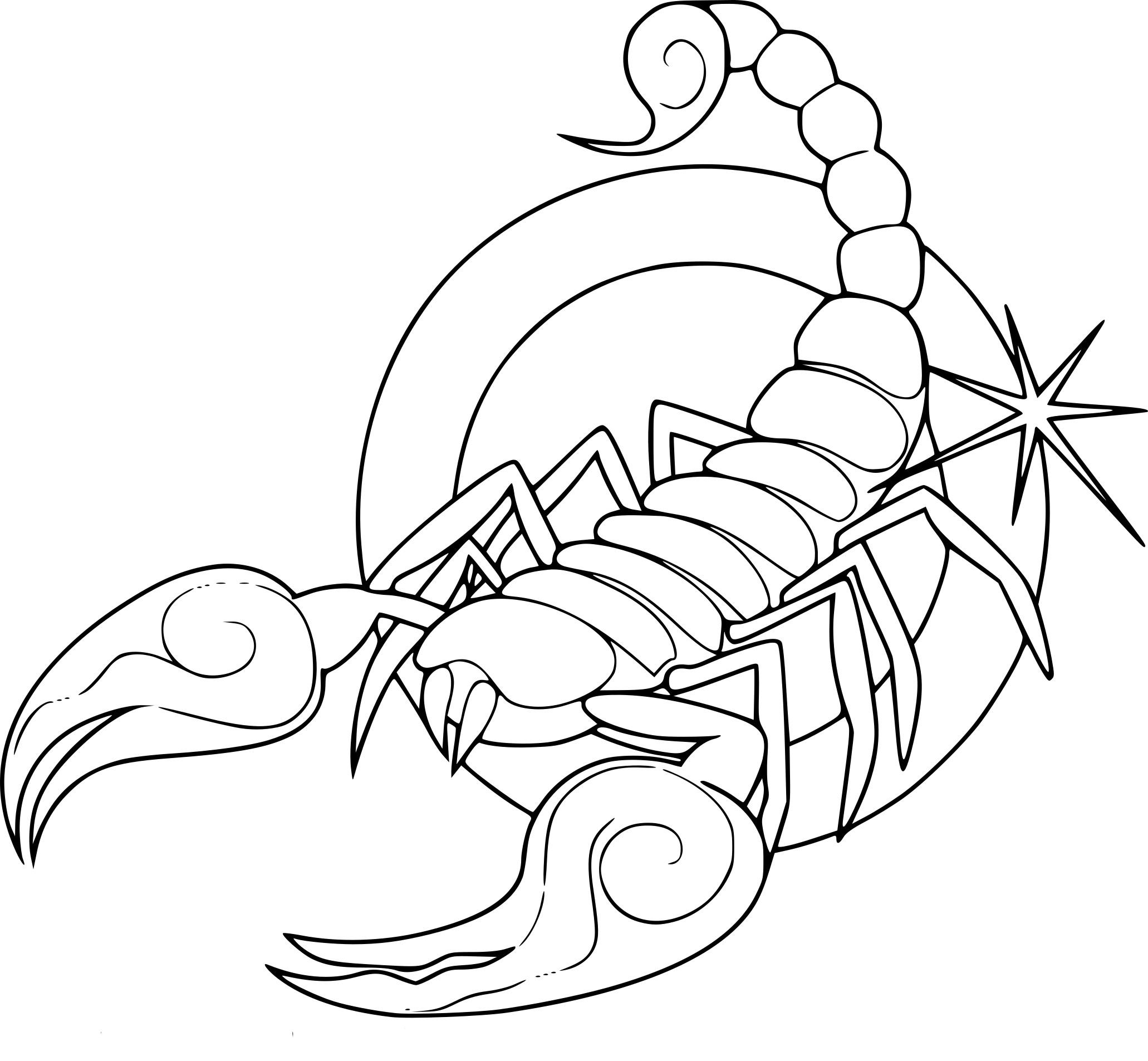 Coloriages à imprimer : Scorpion, numéro : 5a25d7