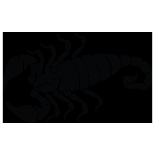 Coloriages à imprimer : Scorpion, numéro : 756006