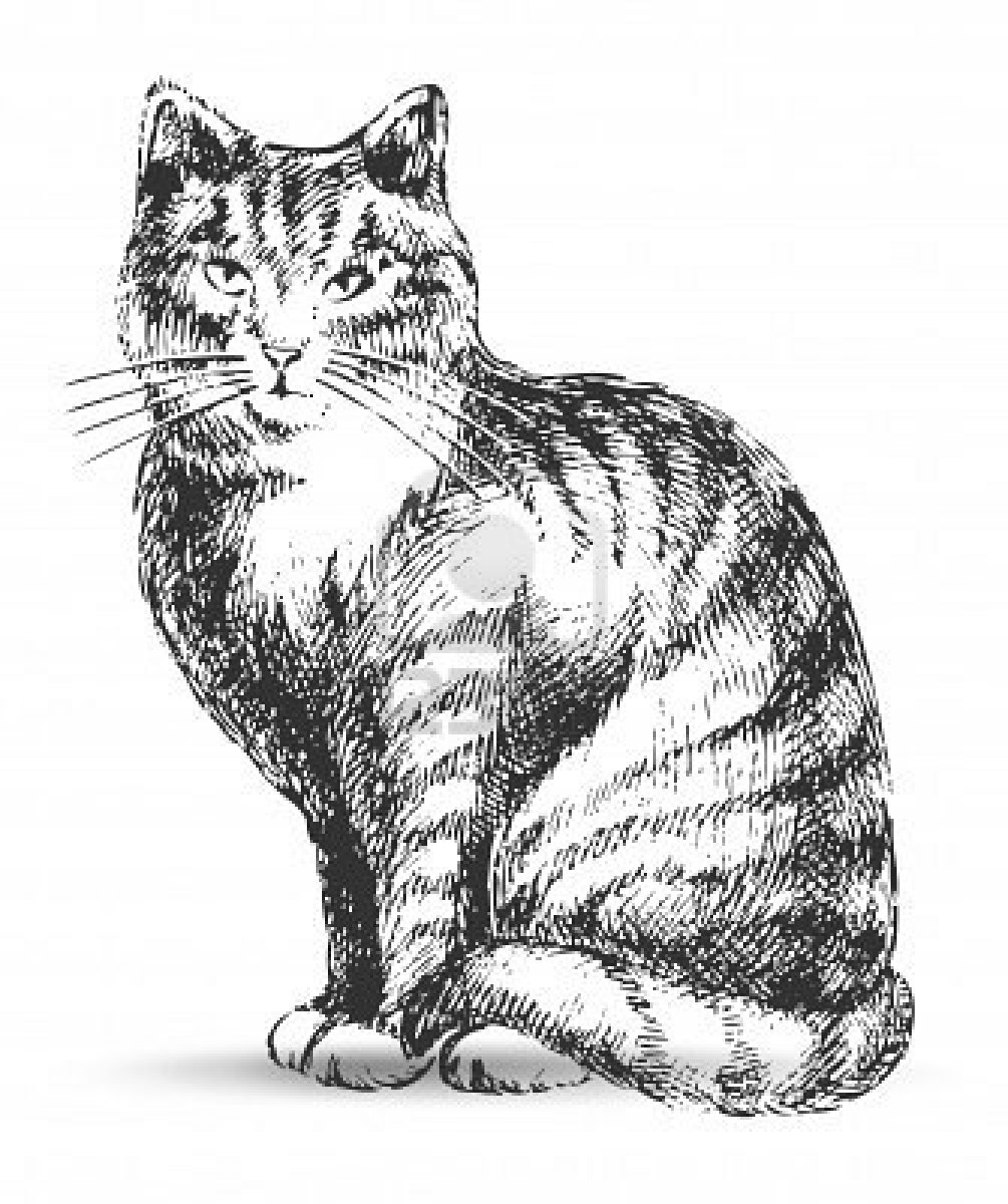 Coloriages imprimer chat num ro 16640 - Dessin chat assis ...