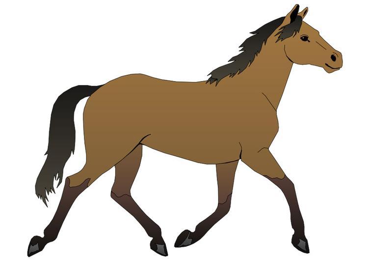 Dessins en couleurs imprimer cheval num ro 117602 - Dessins de chevaux facile ...