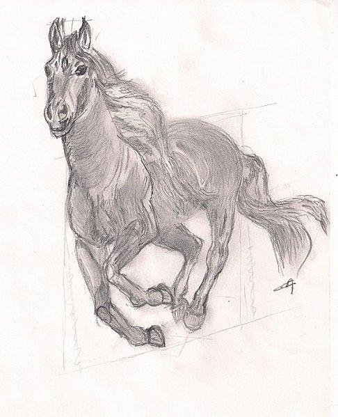 Dessins en couleurs imprimer cheval num ro 19339 - Comment dessiner un cheval au galop ...
