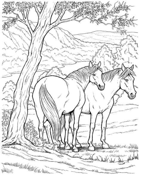 Coloriages à imprimer : Cheval, numéro : 3756