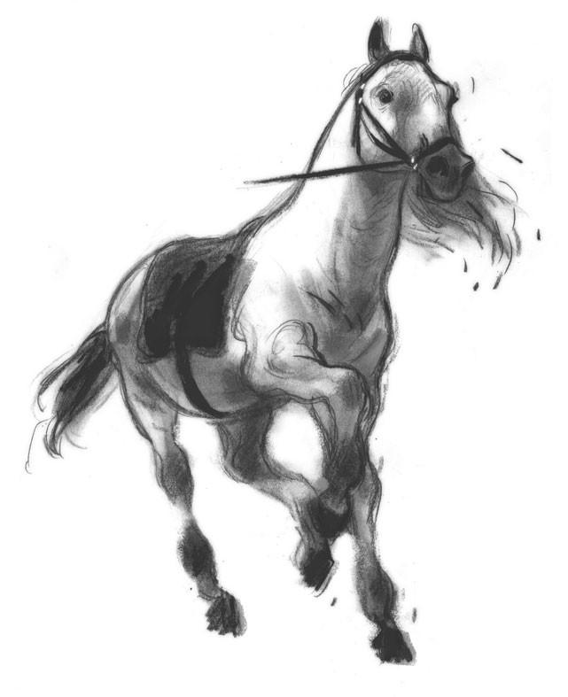 Coloriages imprimer cheval num ro 5385 - Dessin facile de cheval ...