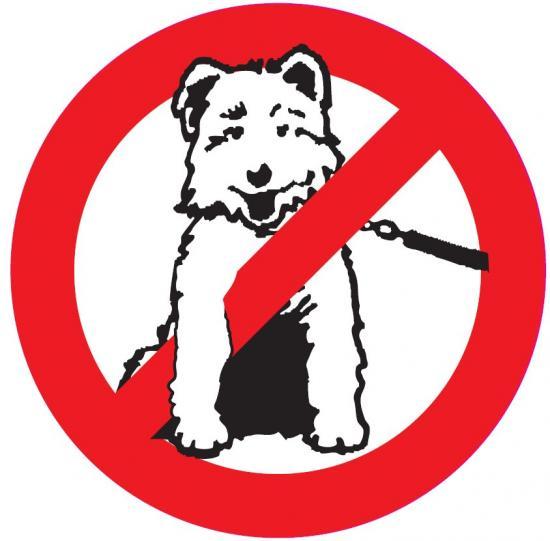 dessins en couleurs 224 imprimer chien num233ro 284778