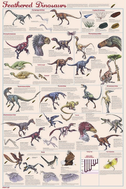 Dessins en couleurs imprimer dinosaures num ro 234947 - Liste des dinosaures carnivores ...