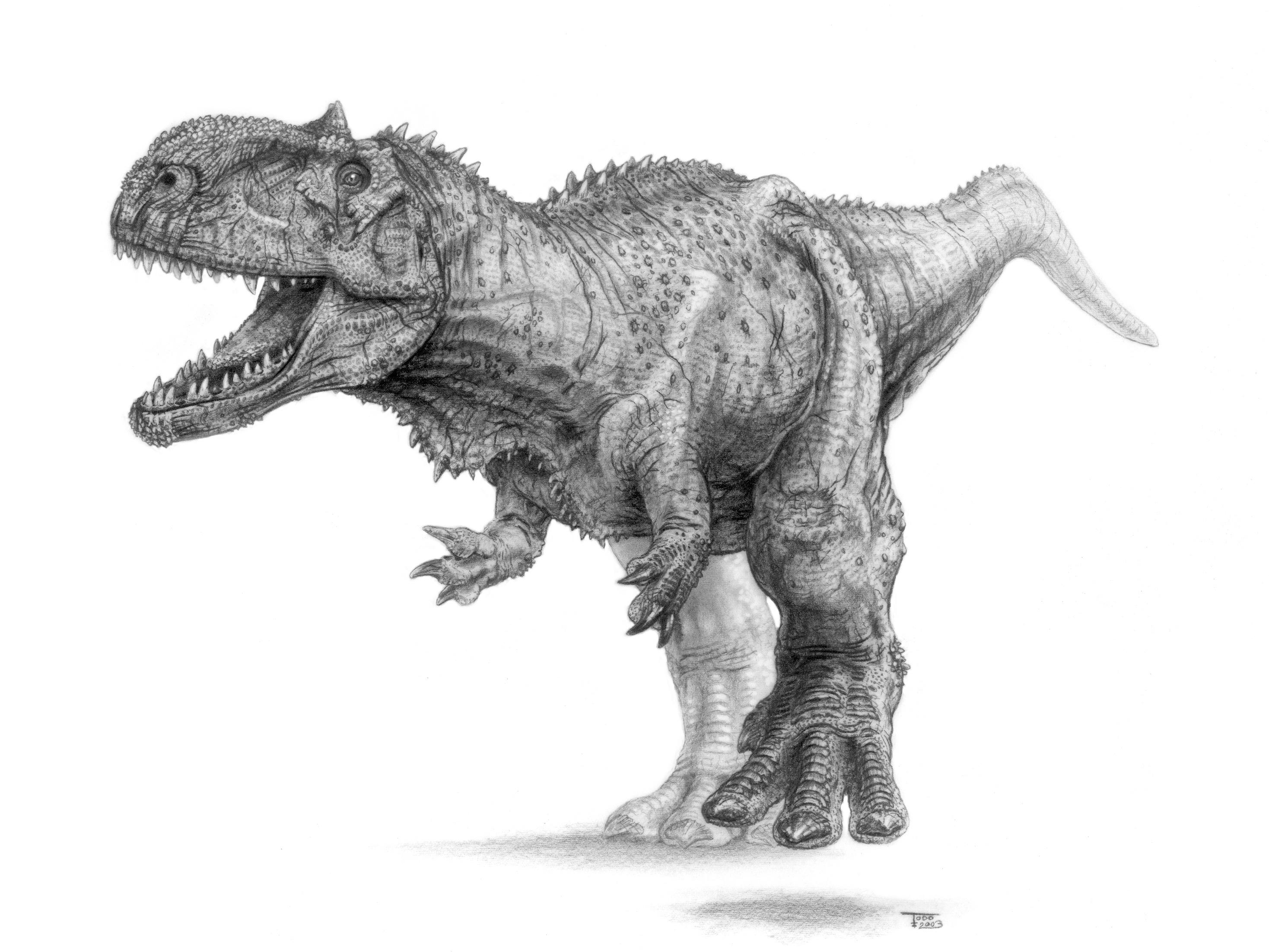 Coloriages à imprimer : Dinosaures, numéro : 671285
