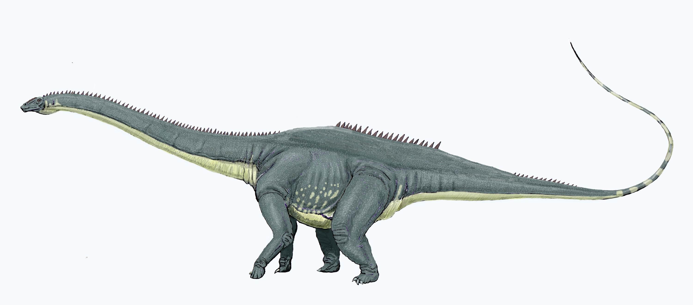 imprimer le dessin en couleurs animaux dinosaures diplodocus numro 219300