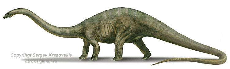 dessin en couleurs imprimer animaux dinosaures diplodocus numro 219314