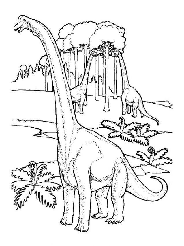 Coloriages imprimer Diplodocus