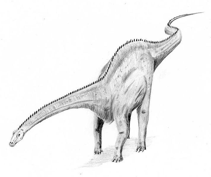 Coloriages imprimer diplodocus num ro 233903 - Coloriage diplodocus ...