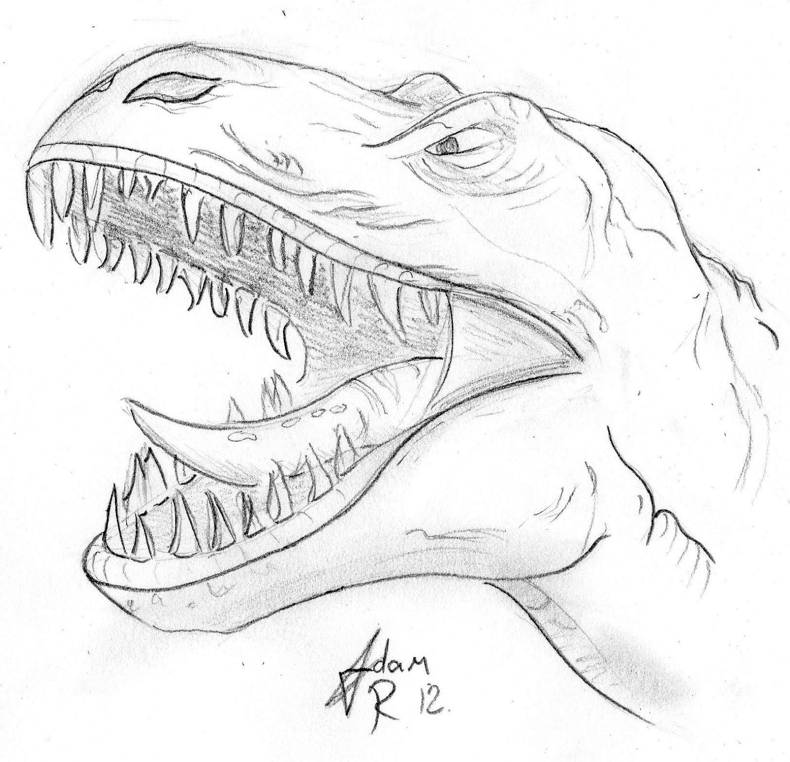 Beau Dessin Dinosaure Tyrannosaure A Imprimer