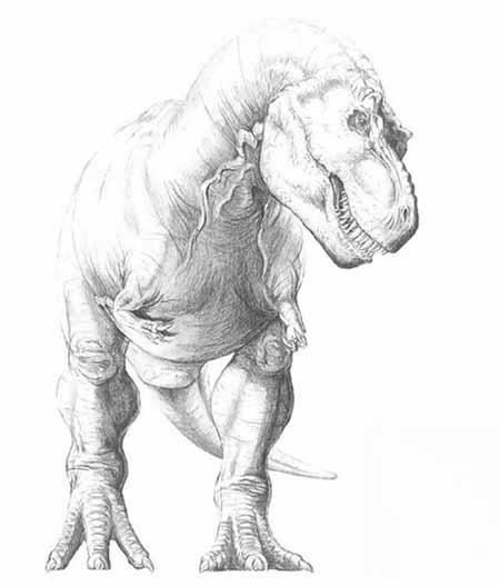 Coloriages imprimer t rex num ro 230993 - Coloriage dinosaure tyrex ...