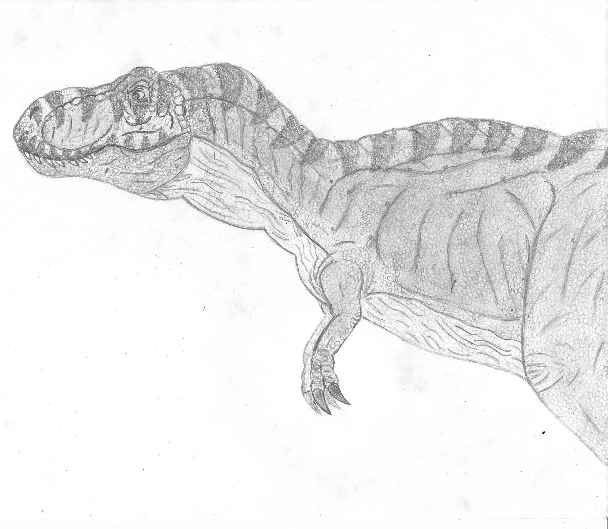 Coloriages imprimer t rex num ro 758616 - Dessin dinosaure t rex ...