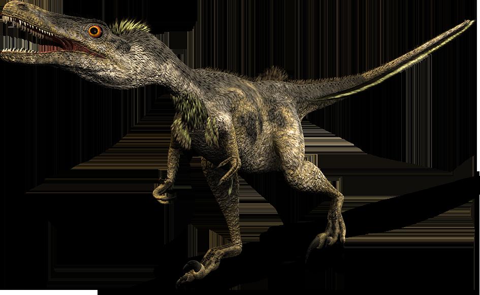 imprimer le dessin en couleurs animaux dinosaures velociraptor numro 219416