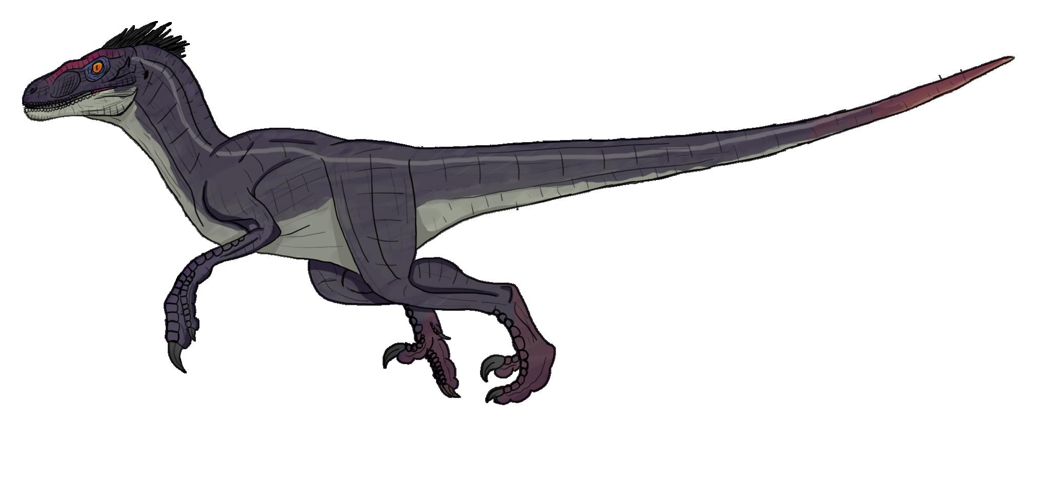 imprimer le dessin en couleurs animaux dinosaures velociraptor numro 219432