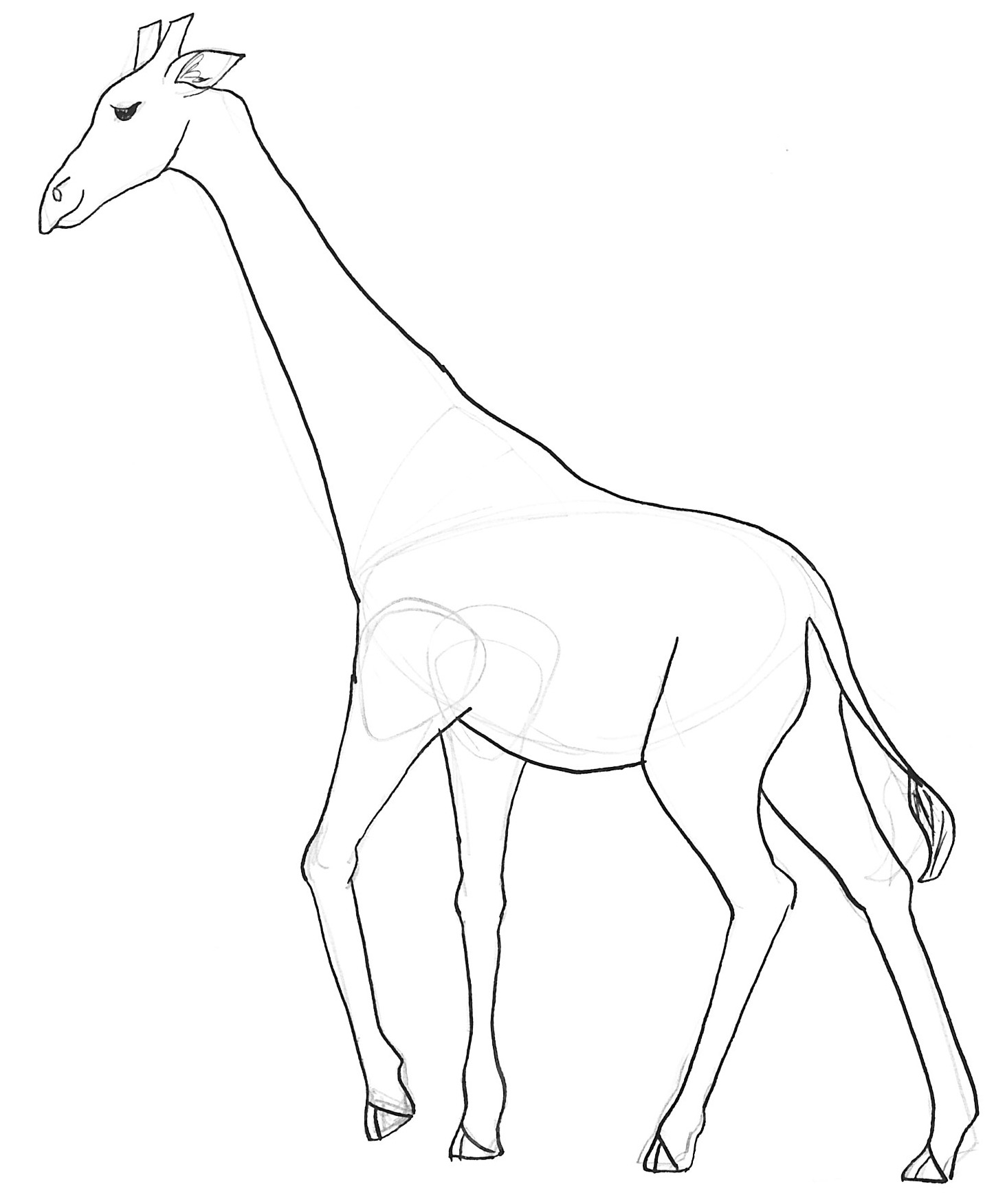 Coloriages à imprimer : Girafe, numéro : 2dcc5e52