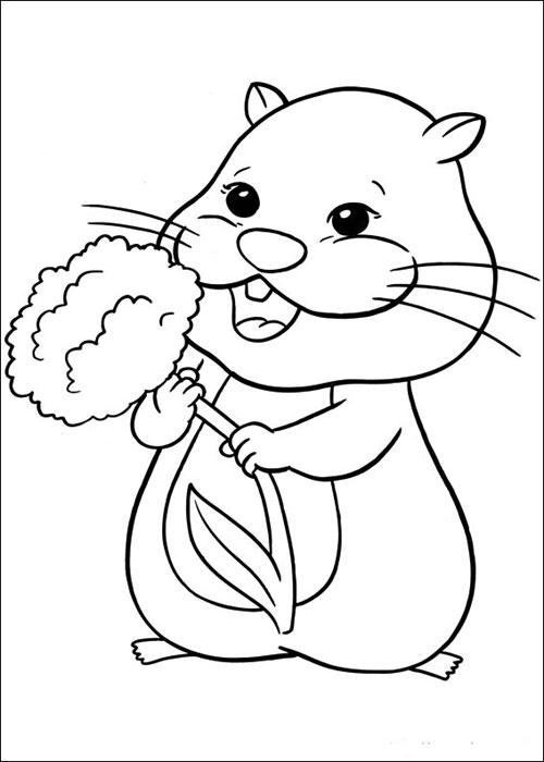 Coloriages à imprimer : Hamster, numéro : 62097