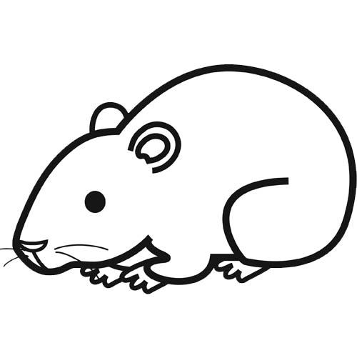 Coloriages à imprimer : Hamster, numéro : 7160