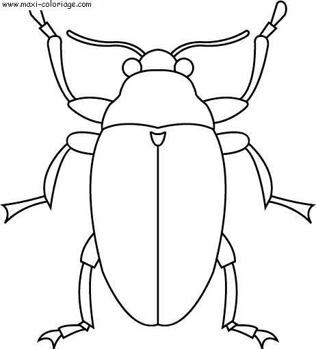 Coloriages à imprimer : Insectes, numéro : 23796