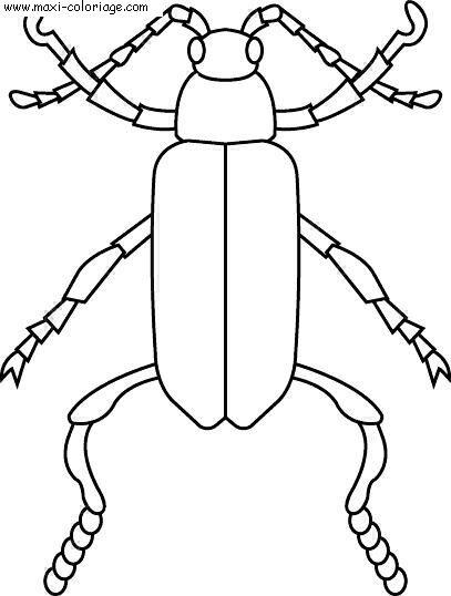 Coloriages à imprimer : Insectes, numéro : 25668