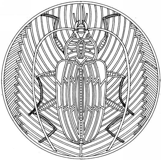 Coloriages à imprimer : Insectes, numéro : 64575