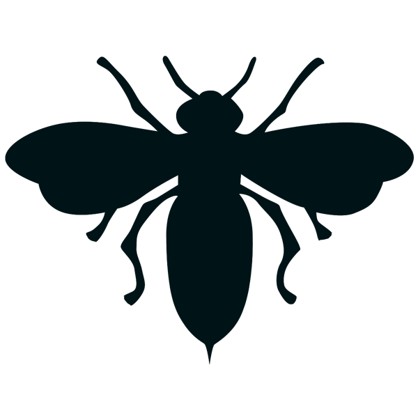 Dessins en couleurs imprimer abeille num ro 598877 - Dessin animaux noir et blanc ...