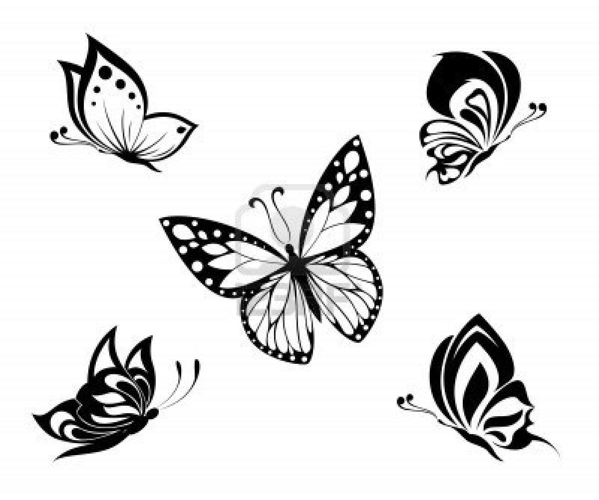 Coloriages à Imprimer Papillon Numéro 26956