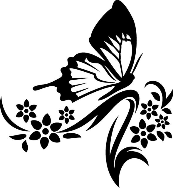 Viaplay sport gratis wings for life