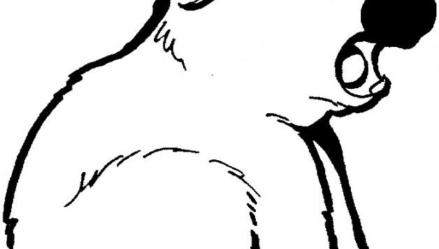 Coloriages à imprimer : Koala, numéro : 603425