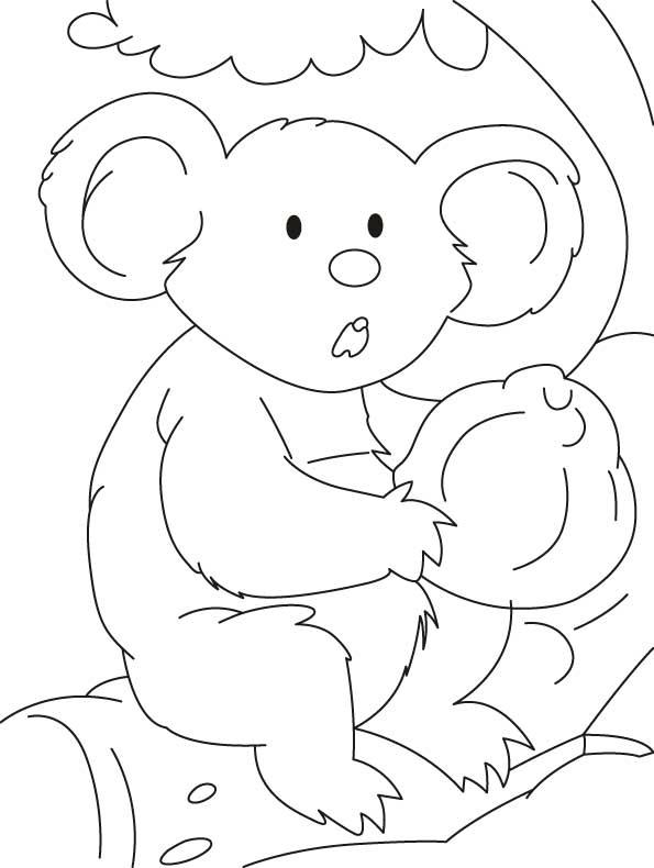 Coloriages à imprimer : Koala, numéro : 605835