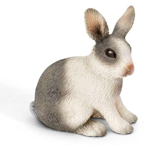 Dessins en couleurs imprimer lapin num ro 204547 - Image lapin a imprimer ...