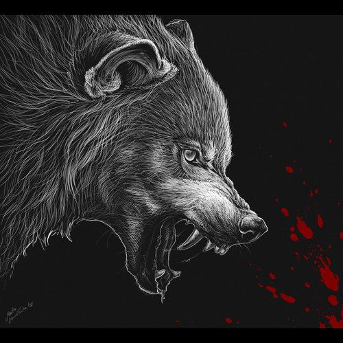 Dessin En Couleurs Imprimer Animaux Loup Numro 22334