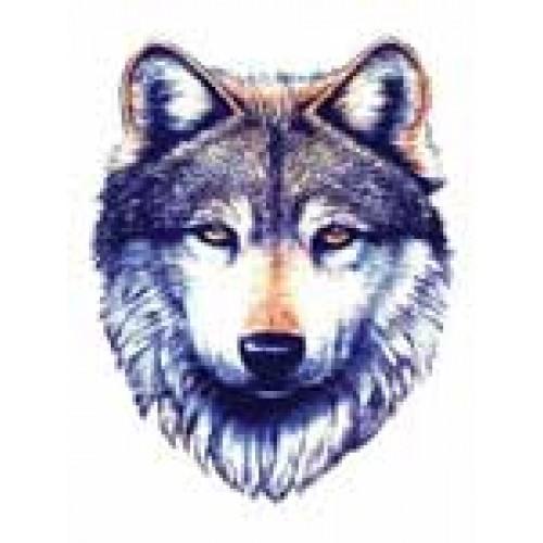 Wallpapers Tribal Animals Animal Tattoo 1024x1024: Dessins En Couleurs à Imprimer : Loup, Numéro : 261286