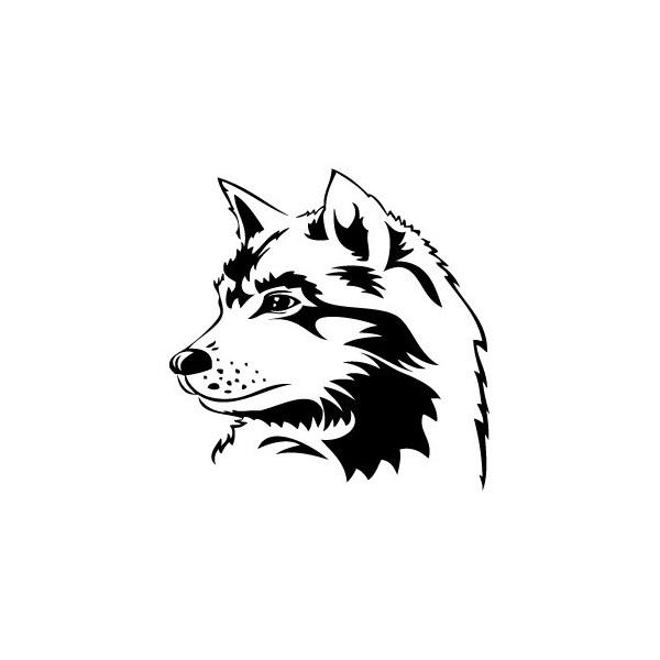 Coloriages imprimer loup num ro 3996 - Coloriage mini loup et les pirates ...