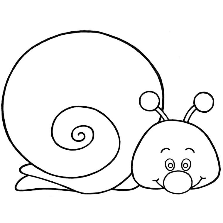 Coloriage imprimer animaux mollusques escargot for Porte eponge rigolo