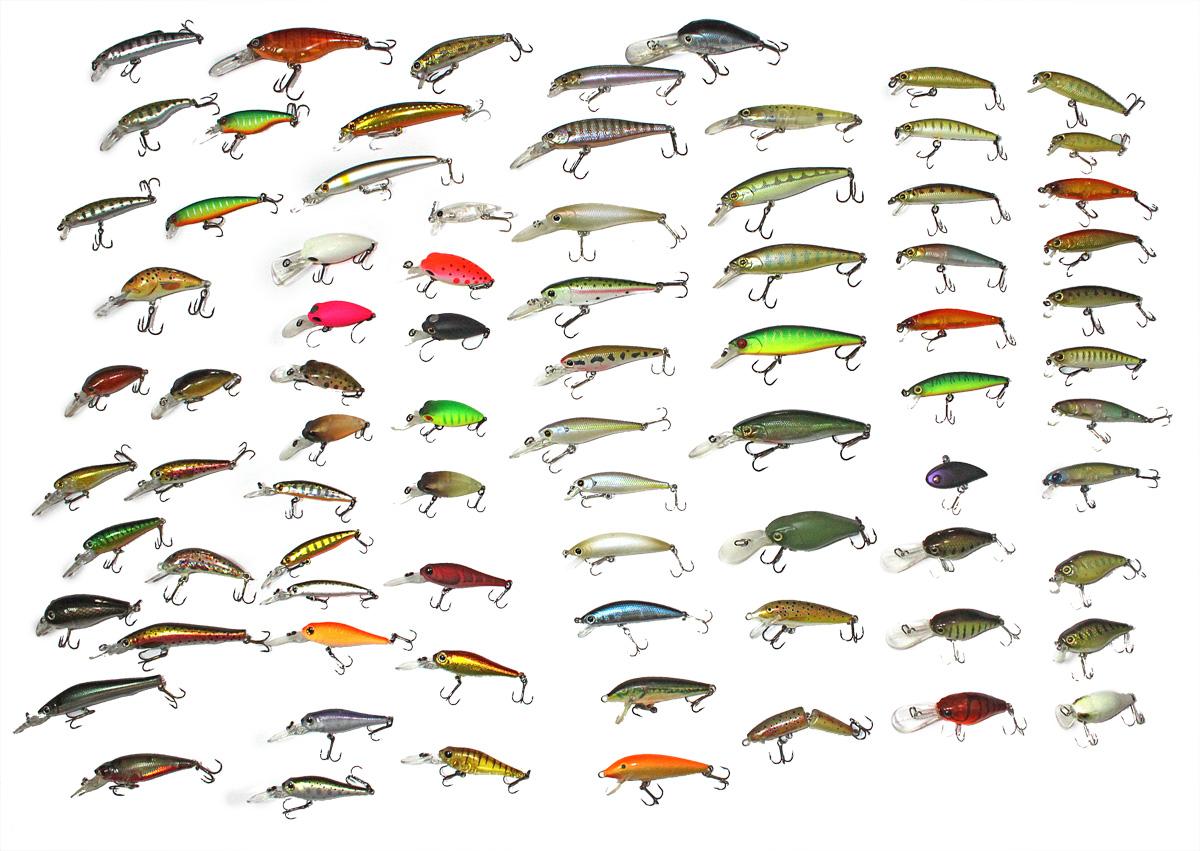 Truite poisson dessins coloriage - Dessin truite ...