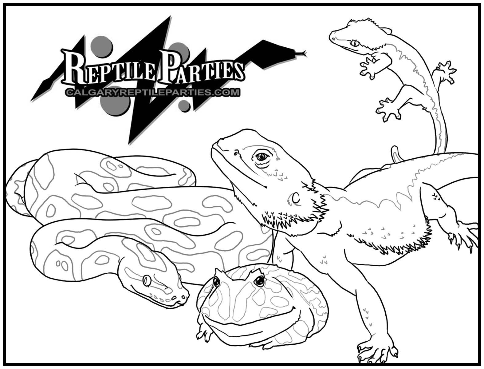 Coloriages à imprimer : Reptiles, numéro : 23973