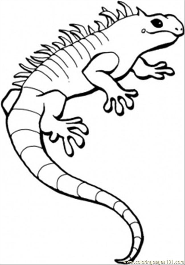 Coloriages à imprimer : Reptiles, numéro : 28197