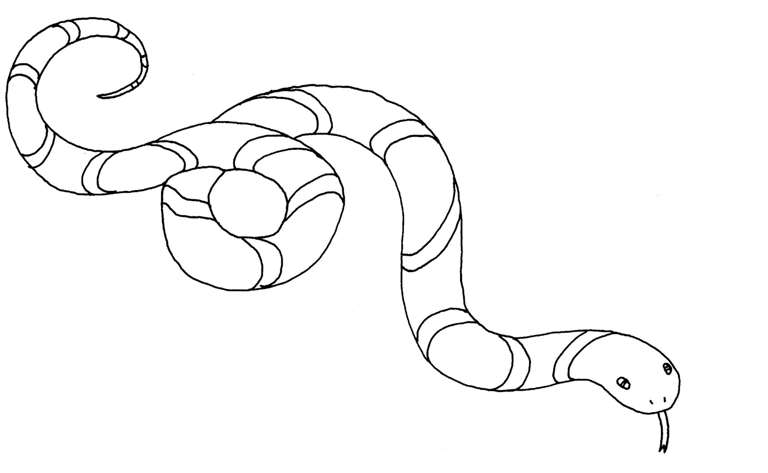 Coloriage Animaux Serpent.Coloriages A Imprimer Serpent Numero 24045