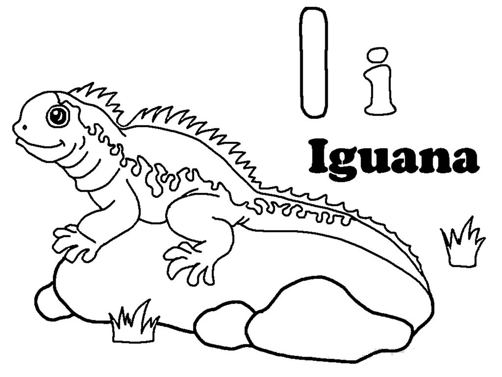 Coloriages à imprimer : Reptiles, numéro : e483aefd
