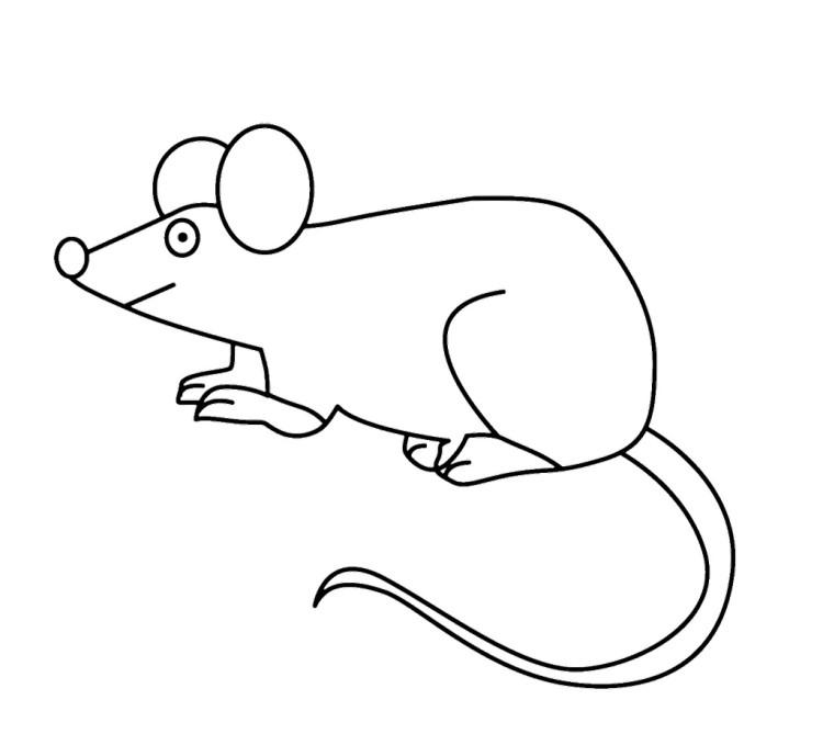 Souris coloriage my blog - Coloriage petite souris ...