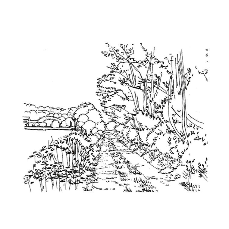 Coloriages imprimer nature num ro 16284 - Coloriage nature a imprimer ...