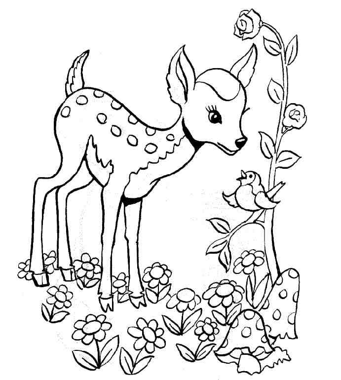 Coloriages à imprimer : Nature, numéro : 21715